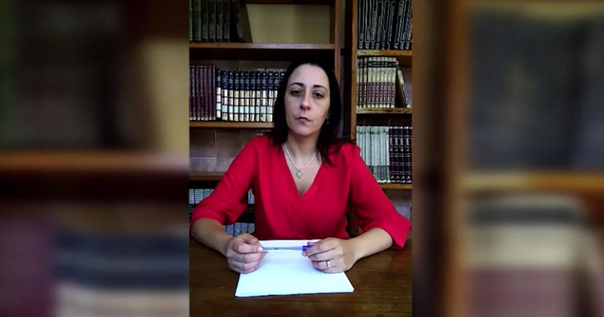 Comentário Monica Villar – História/Resumo da Família Vicentina