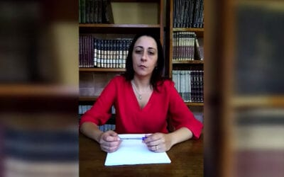 Commentary of Monica Villar – History/Overview of the Vincentian Family
